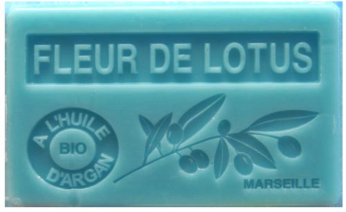 Lotusblüte Fleur De Lotus
